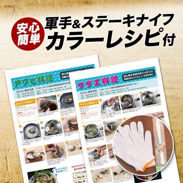 活えぞあわび養殖(韓国産)活ざざえ各3個入〔海水入酸素入]〔送料無料〕9種類のカラーレシピ&保存方法付なのでご家庭で料理できます それに100%活きたまま|marukatsu-onjuku11|02