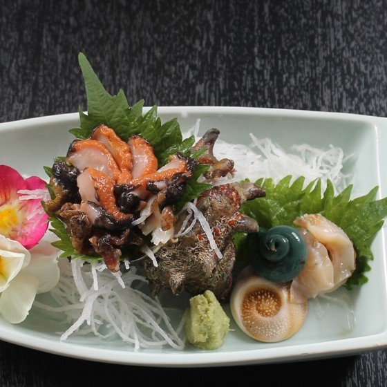 活えぞあわび養殖(韓国産)活ざざえ各5個入〔海水入酸素入〕〔送料無料〕9種類のカラーレシピ&保存方法付なのでご家庭で料理できます それに100%活きたまま|marukatsu-onjuku11|05