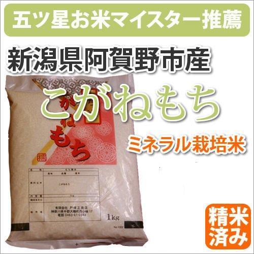 新潟県阿賀野市産ミネラル栽培米「こがねもち」450g marumarumaru