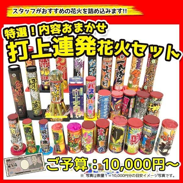 内容おまかせ!特選 打ち上げ・連発花火セット