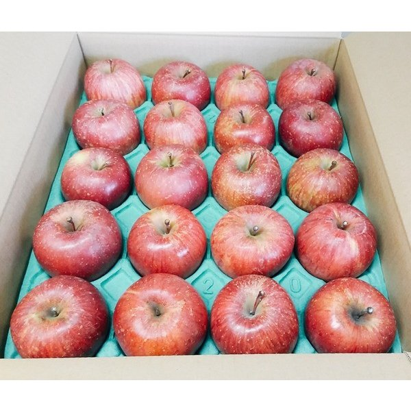セール CA貯蔵 訳あり りんご サンふじ Cランク 家庭用 約10kg 小玉40玉 糖度13度以上 長野県産 送料無料 フルーツ リンゴ 信州 ワケアリ わけあり 2021|marutomi-s|02