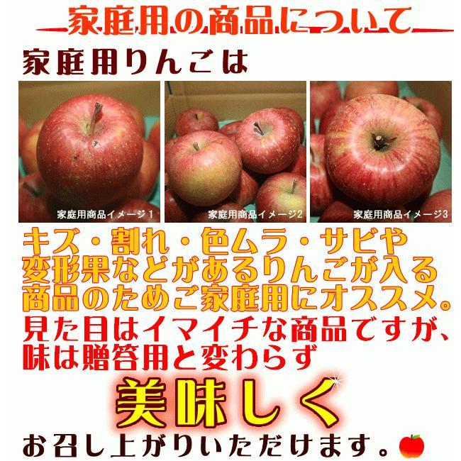 セール CA貯蔵 訳あり りんご サンふじ Cランク 家庭用 約10kg 小玉40玉 糖度13度以上 長野県産 送料無料 フルーツ リンゴ 信州 ワケアリ わけあり 2021|marutomi-s|03