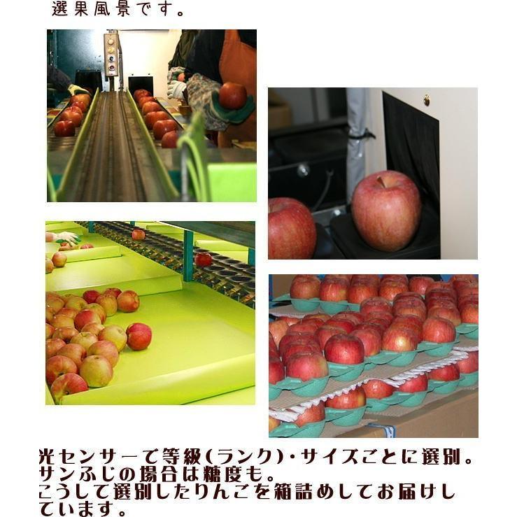 セール CA貯蔵 訳あり りんご サンふじ Cランク 家庭用 約10kg 小玉40玉 糖度13度以上 長野県産 送料無料 フルーツ リンゴ 信州 ワケアリ わけあり 2021|marutomi-s|05
