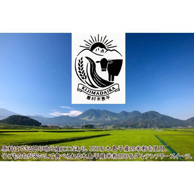 木島平米粉で作ったふんわりな ロールケーキピース10個入 木島平コシヒカリ粉100% お取り寄せ 米粉スイーツ 送料無料 グルテンフリー 誕生日 お歳暮 ギフト|marutomi-s|10