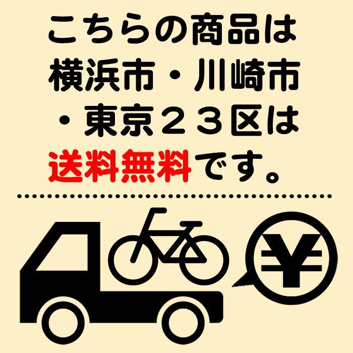 電動自転車 パナソニック 子供乗せ自転車 後子供乗せ 3人乗り 2020年モデル ギュットアニーズDX デザートイエロー 前後20インチ BE-ELAD032 marutomiauto 02