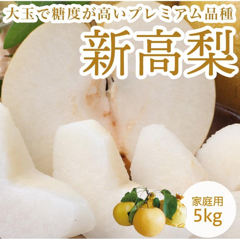 新高梨 セール商品 愛媛県産 梨 にいたかなし 5kg ついに再販開始 約10~16玉 家庭用