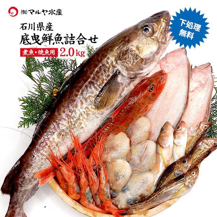 四季の魚を直送 旬の獲れたて底曳鮮魚 2.0kg詰め合わせ 石川県産 下処理済み 大幅値下げランキング 主に焼魚 ※お届け日の指定不可 煮魚用 完全送料無料