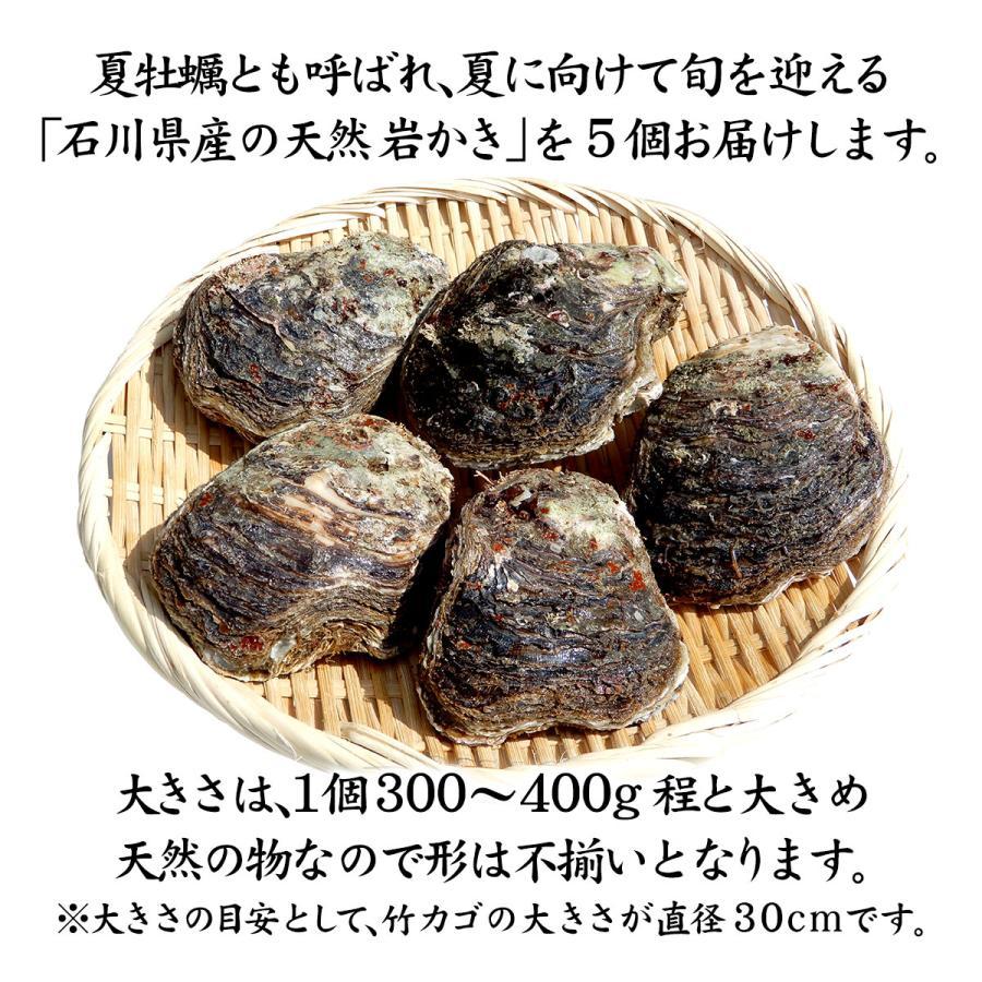 岩牡蠣 (天然 殻付き 生食用) 石川県産 大×5個 maruya 02