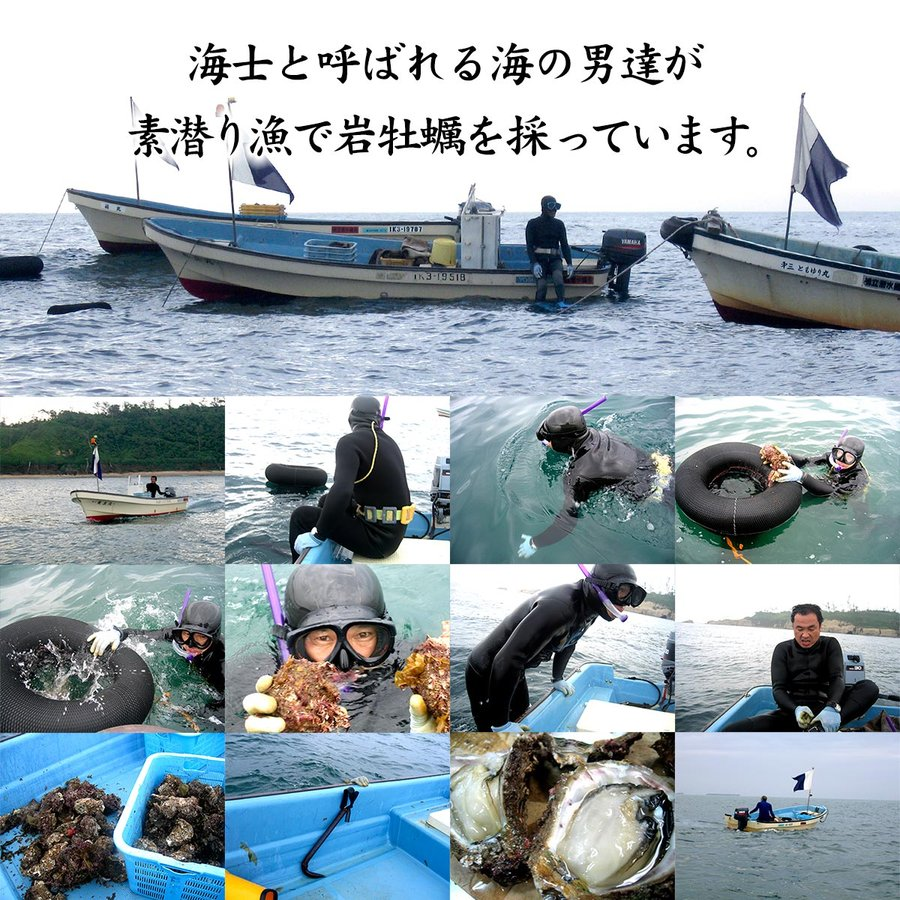 岩牡蠣 (天然 殻付き 生食用) 石川県産 大×5個 maruya 11