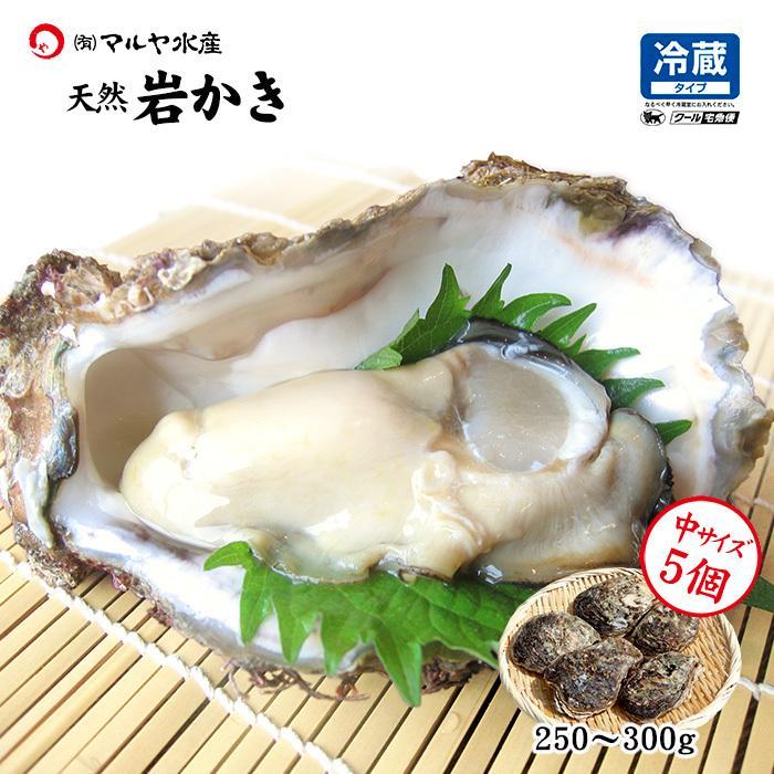 岩牡蠣 (天然 殻付き 生食用) 石川県産 中×5個|maruya