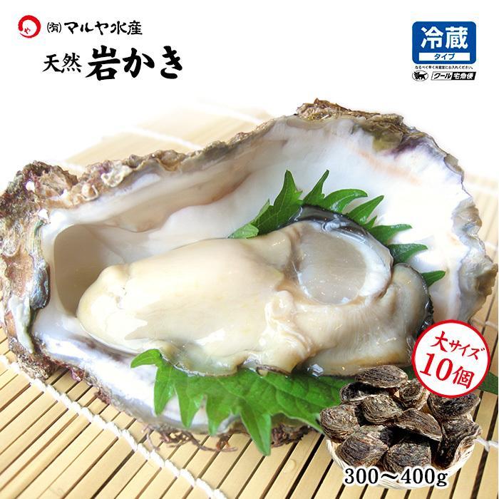 岩牡蠣 (天然 殻付き 生食用) 石川県産 大×10個 maruya
