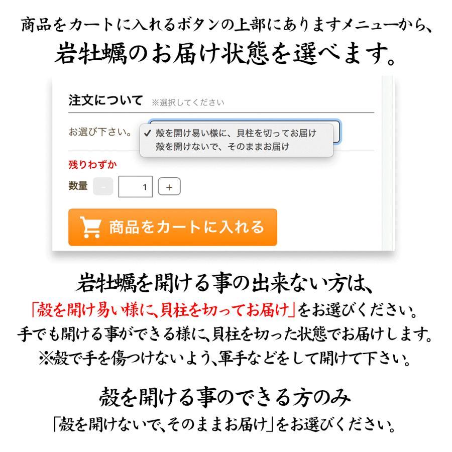 岩牡蠣 (天然 殻付き 生食用) 石川県産 大×10個 maruya 03