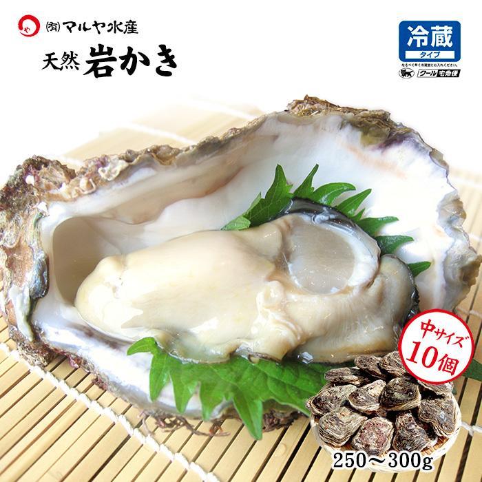 岩牡蠣 (天然 殻付き 生食用) 石川県産 中×10個|maruya