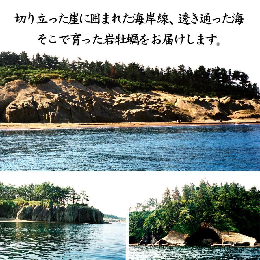 岩牡蠣 (天然 殻付き 生食用) 石川県産 中×10個|maruya|10