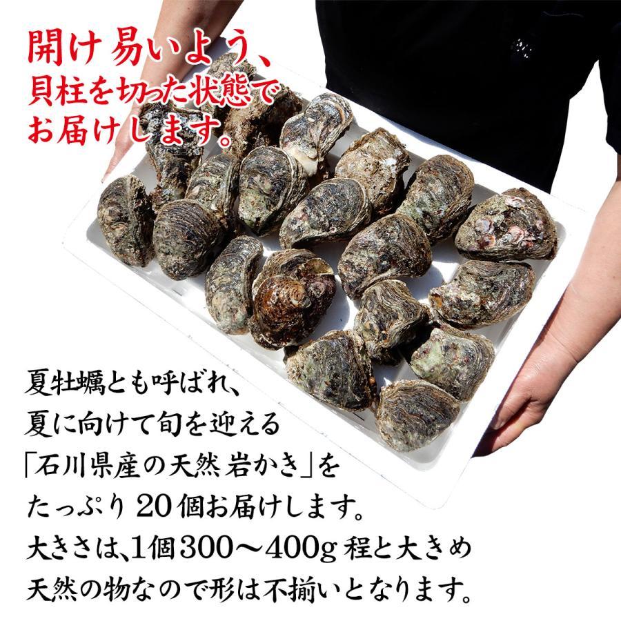 岩牡蠣 (天然 殻付き 生食用) 石川県産 大×20個 開け易いよう貝柱を切ってお届け|maruya|02