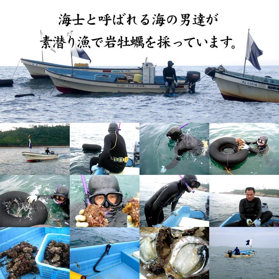 岩牡蠣 (天然 殻付き 生食用) 石川県産 大×20個 開け易いよう貝柱を切ってお届け|maruya|11