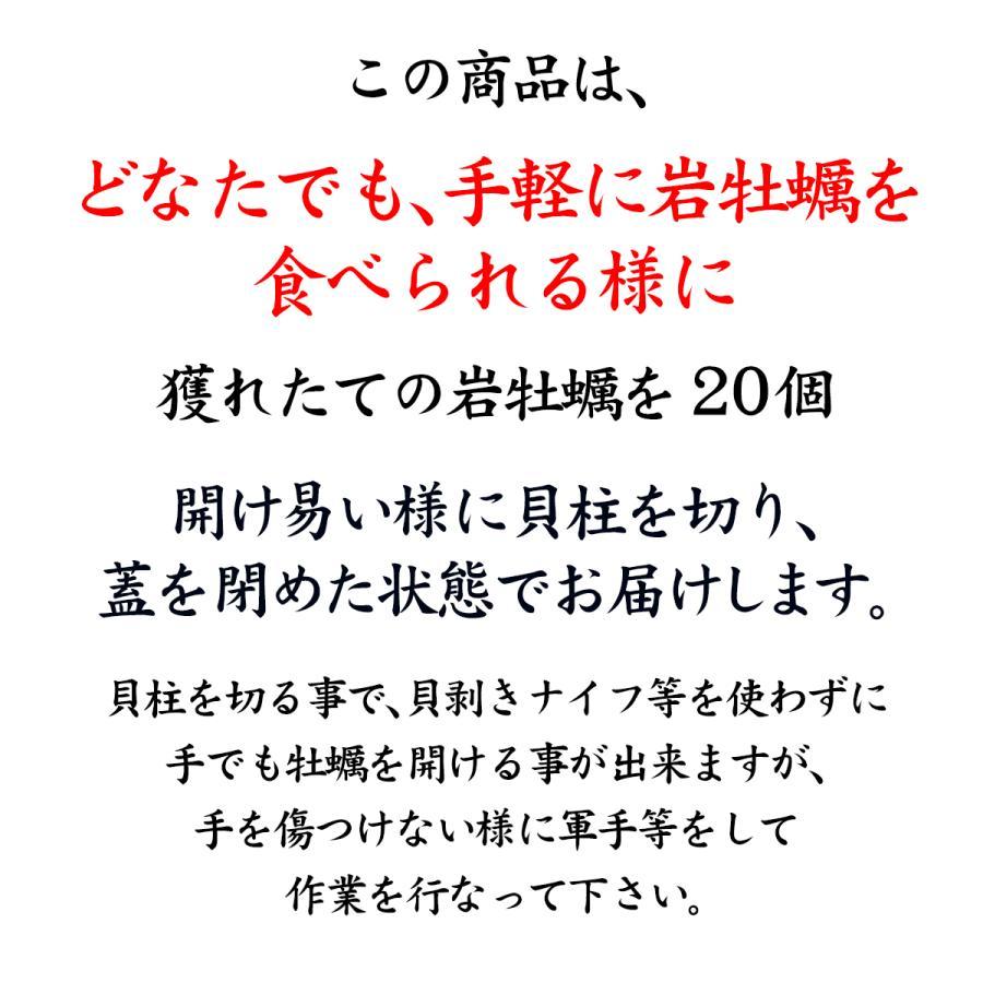 岩牡蠣 (天然 殻付き 生食用) 石川県産 大×20個 開け易いよう貝柱を切ってお届け|maruya|03