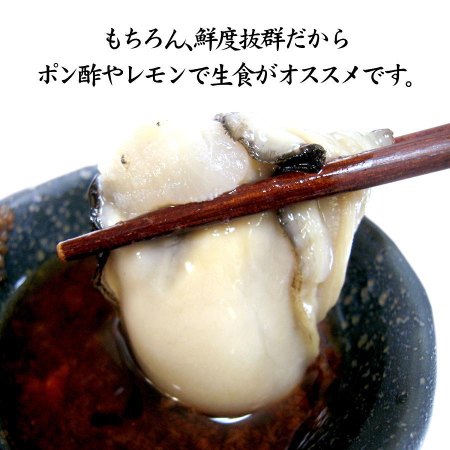 岩牡蠣 (天然 殻付き 生食用) 石川県産 大×20個 開け易いよう貝柱を切ってお届け|maruya|08