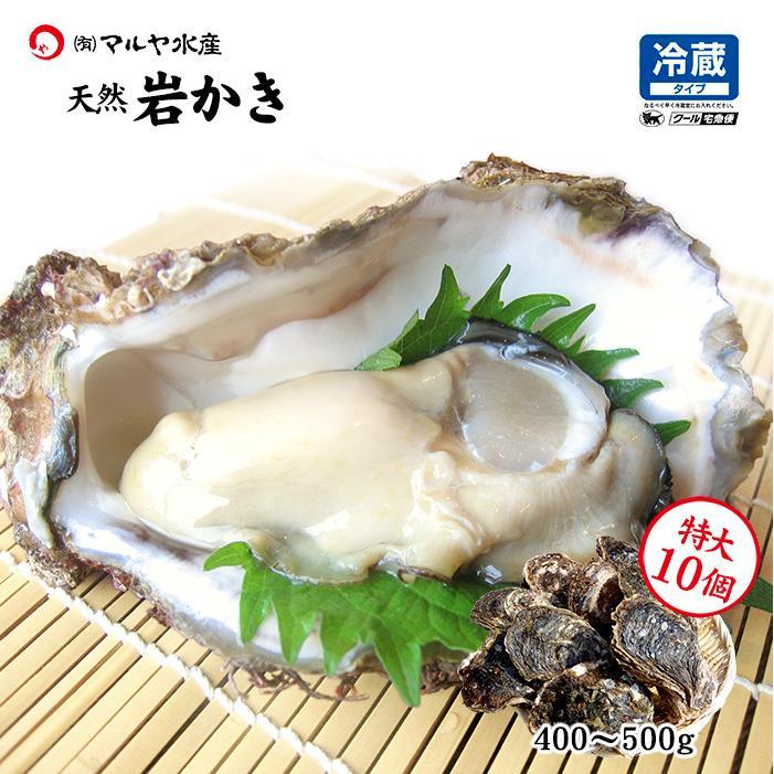 岩牡蠣 (天然 殻付き 生食用) 石川県産 特大×10個 maruya