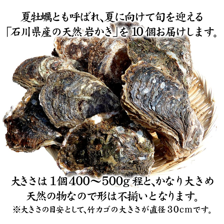 岩牡蠣 (天然 殻付き 生食用) 石川県産 特大×10個 maruya 02