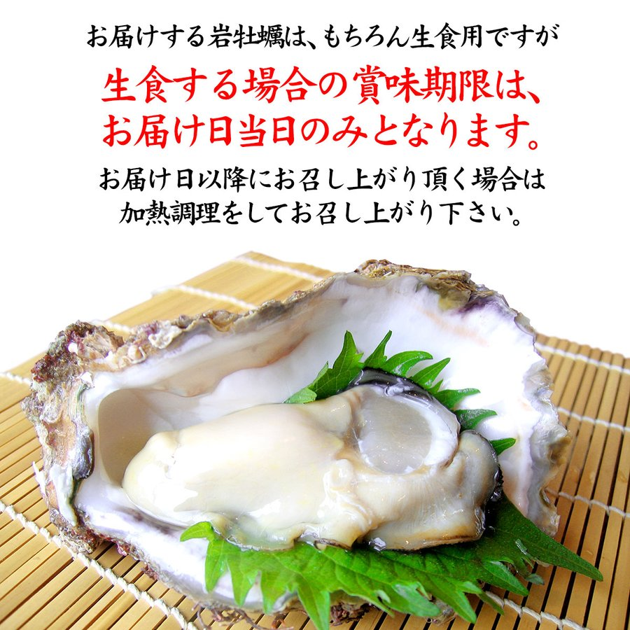 岩牡蠣 (天然 殻付き 生食用) 石川県産 特大×20個 開け易いよう貝柱を切ってお届け|maruya|03