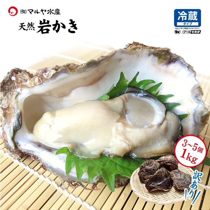 岩牡蠣 (天然 殻付き 生食用) 石川県産 お試し訳あり 3〜5個 合計1kg以上 maruya