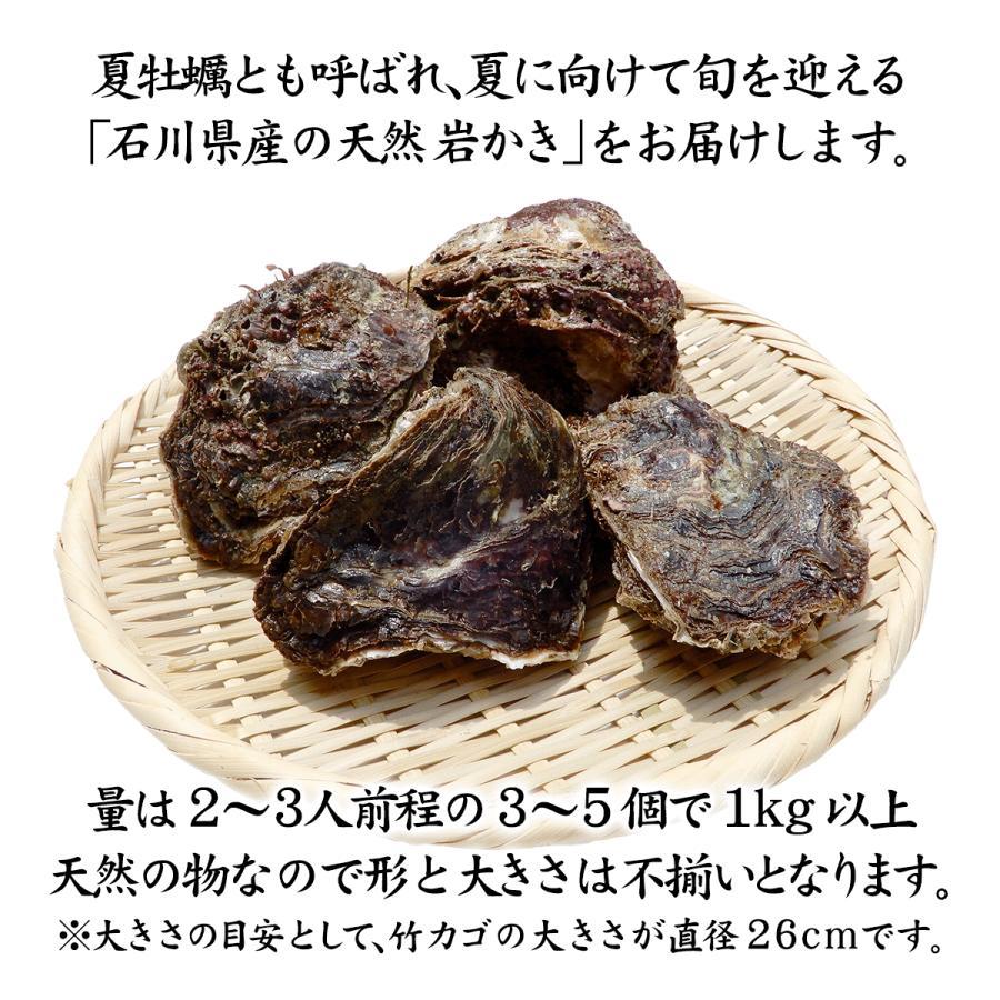 岩牡蠣 (天然 殻付き 生食用) 石川県産 お試し訳あり 3〜5個 合計1kg以上 maruya 02