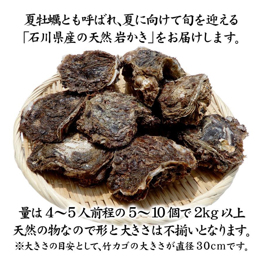 岩牡蠣 (天然 殻付き 生食用) 石川県産 お試し訳あり 5〜10個 合計2kg以上|maruya|02