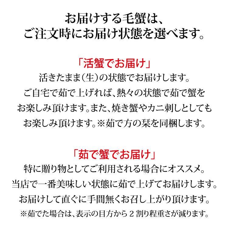 数量限定入荷!活毛蟹 1匹 800g〜700g (石川県産)|maruya|06