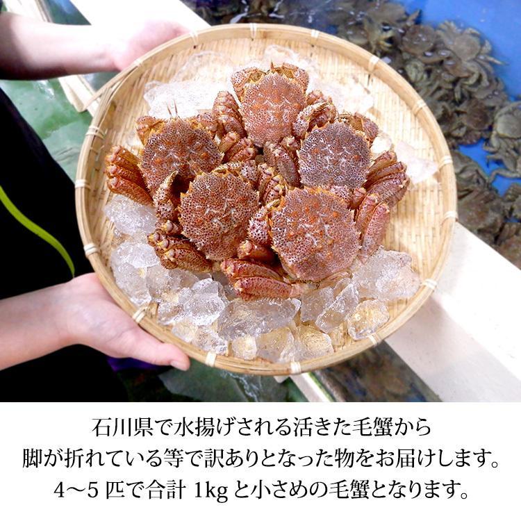 数量限定入荷!活毛蟹 4〜5匹 合計1.0kg詰合せ 訳あり:小さめ/足折れ/雄雌混合 (石川県産)|maruya|02