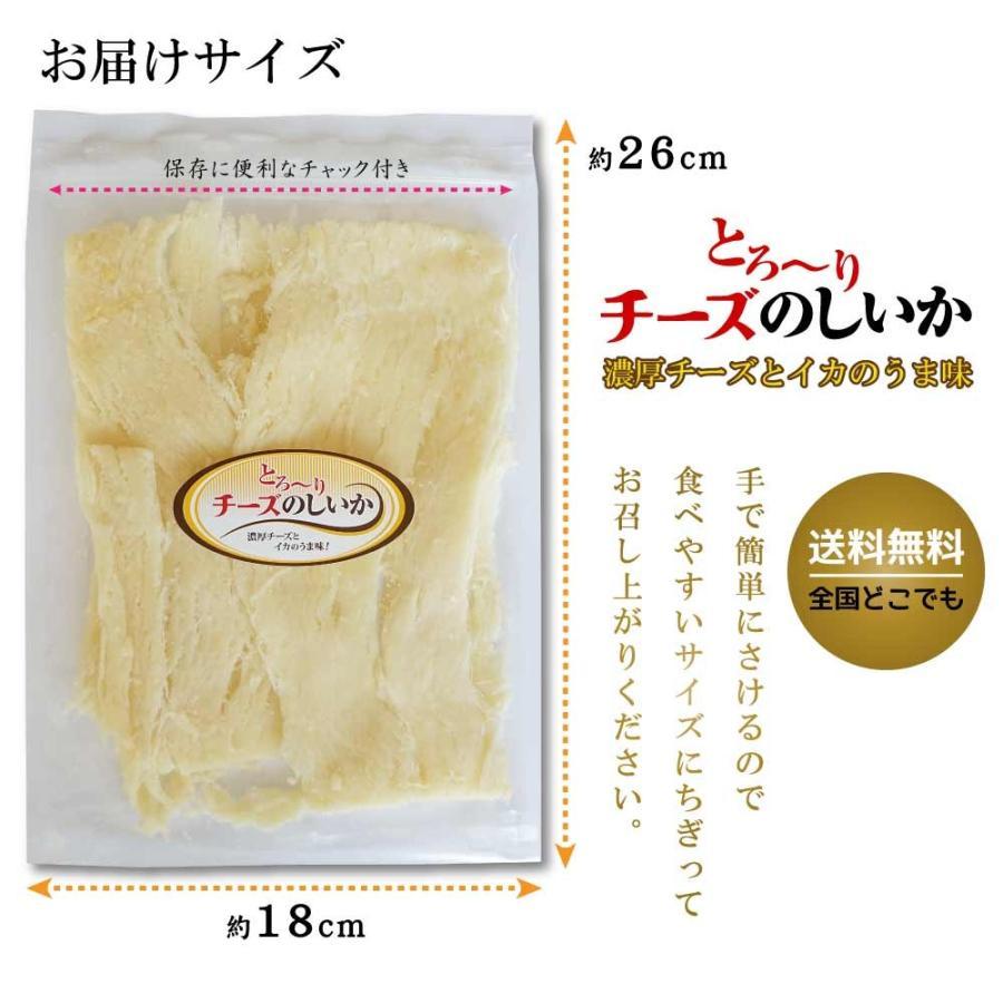 珍味 おつまみ チーズ 濃厚チーズイカ 110g のしいか チーズ さきいか まろやか 子供 おやつ 新食感 maruyuugyogyoubu 08