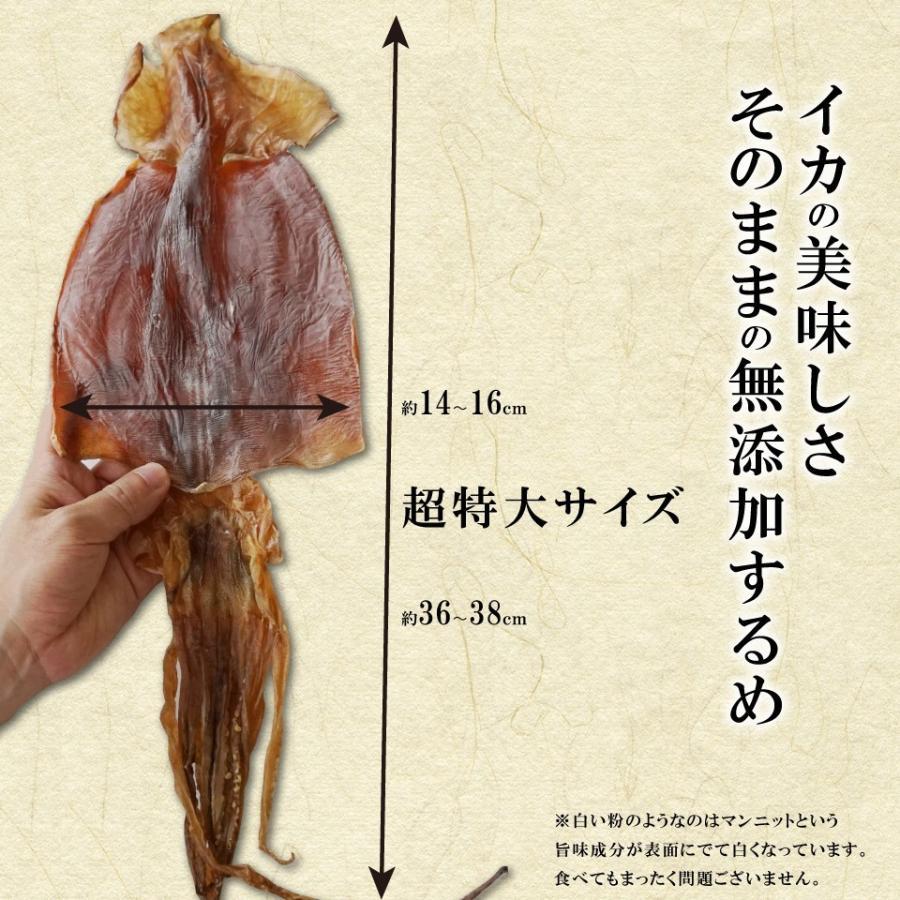 北海道産 するめ 驚きの超特大 100g前後×2枚 スルメイカ 無添加 珍味 おつまみ 北海道産 イカ|maruyuugyogyoubu|06