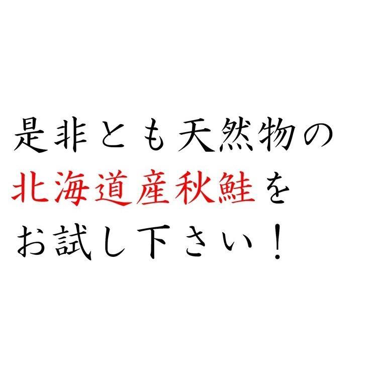 北海道産 秋さけ フィレ お刺身用 天然物 希少品 1枚約900g 条件付き送料無料 お歳暮|masaoshoten|12