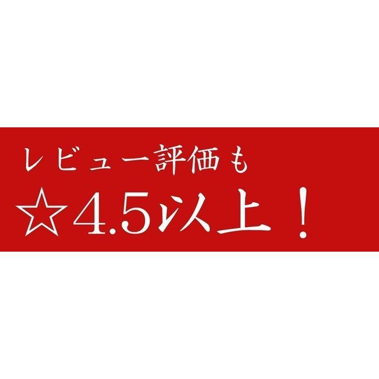 【リピーター続出】いくら イクラ いくら醤油漬け 500g 北海道産 秋鮭 最高級品 箱付き 条件付き送料無料 ギフト 母の日 父の日|masaoshoten|05