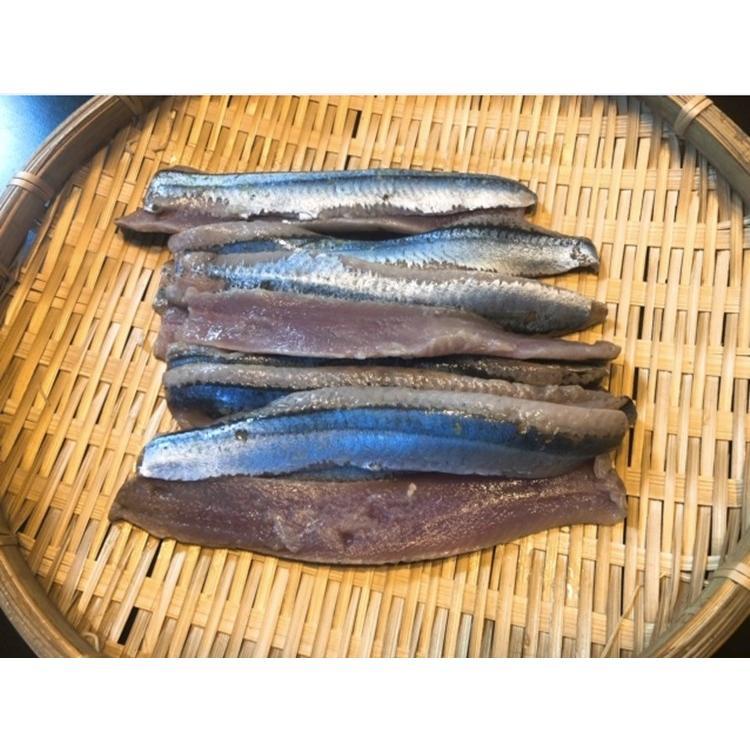 さんま サンマ 秋刀魚 北海道産 お刺身さんま 1パック12枚入×2 24枚入 条件付き送料無料 秋の味覚 生食可 masaoshoten 04
