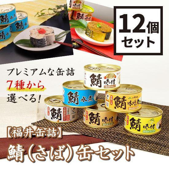 福井缶詰 7種類から選べる!鯖(さば)缶12個セット 鯖缶 mashimo