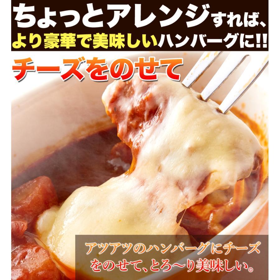煮込みハンバーグ 野菜入りデミグラス 約200g3袋 ポイント消化 送料無料 ゆうパケット 国産 ハンバーグ レトルト|masuters-mart|13