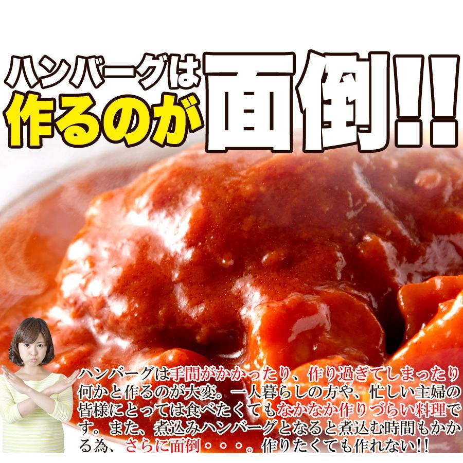 煮込みハンバーグ 野菜入りデミグラス 約200g3袋 ポイント消化 送料無料 ゆうパケット 国産 ハンバーグ レトルト|masuters-mart|08