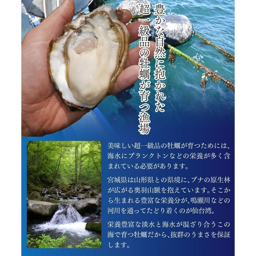 送料無料 宮城県産 殻付き 活牡蠣 3kg ※大小混合で約15~50個【加熱用】|maticyoku|02