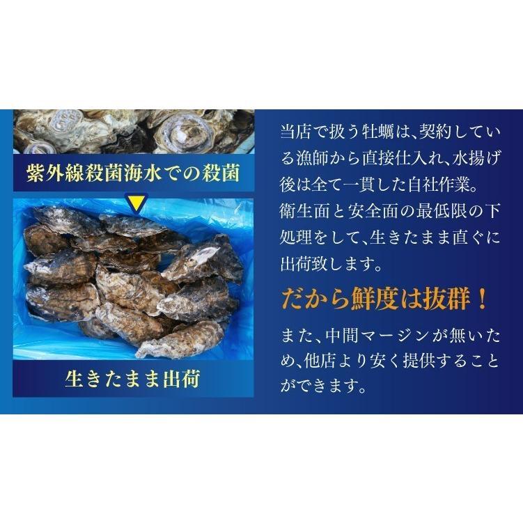 送料無料 宮城県産 殻付き 活牡蠣 3kg ※大小混合で約15~50個【加熱用】|maticyoku|04