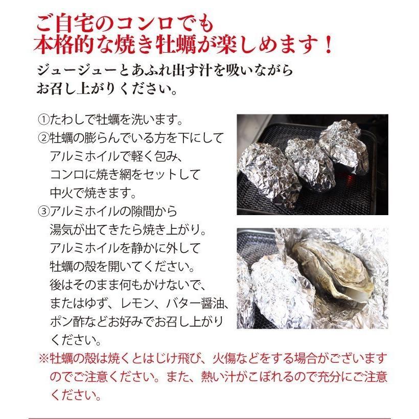 送料無料 宮城県産 殻付き 活牡蠣 3kg ※大小混合で約15~50個【加熱用】|maticyoku|07