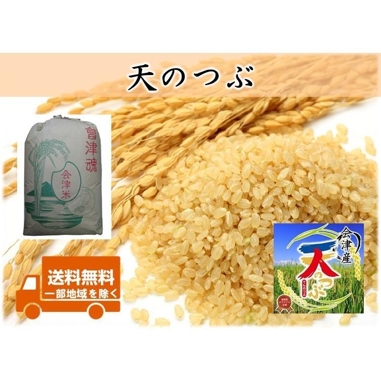 令和元年産 会津産天のつぶ 玄米30kg