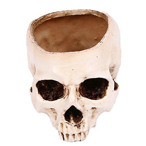 [クイーンビー] ドクロ ガラ空き インテリア 植木鉢 プランター 小物入れ 頭蓋骨 髑髏 骸骨 ガイコツ スカル リアル おしゃれ イベント 小道具|mbe-1