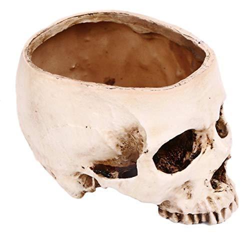[クイーンビー] ドクロ ガラ空き インテリア 植木鉢 プランター 小物入れ 頭蓋骨 髑髏 骸骨 ガイコツ スカル リアル おしゃれ イベント 小道具|mbe-1|05