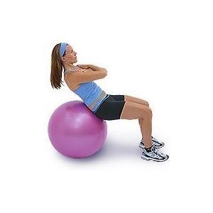 品質が (60cm - Swiss , Plum) Ball - TheraGear Swiss Ball Pro, 【全商品オープニング価格 特別価格】:4628ced0 --- airmodconsu.dominiotemporario.com