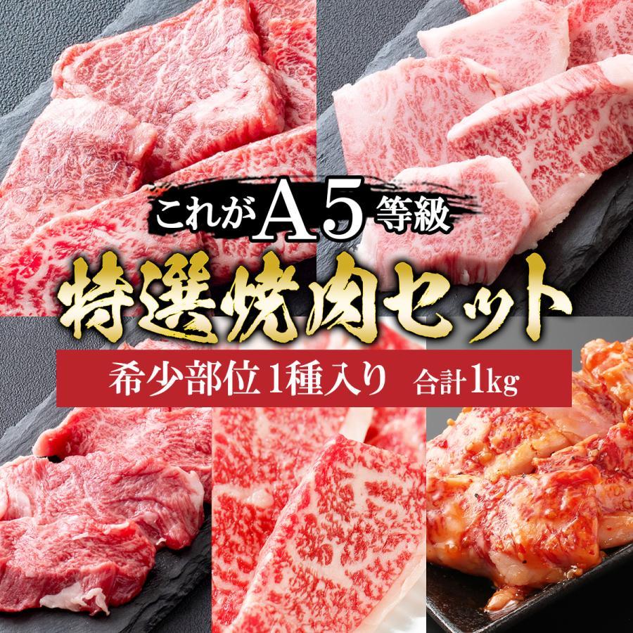 肉 牛肉 A5ランク 和牛 特上 焼肉 5種盛り 焼肉セット 1kg 国産 A5等級 高級 焼き肉 BBQ バーベキュー|meat-tamaya