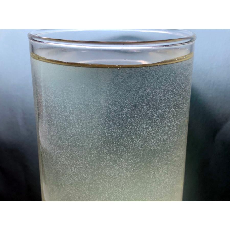 ゾウリムシ インフゾリア 300ml  説明書付き|medaka-tomo