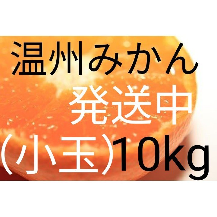 (送料無料)(小玉みかん10kg)佐賀の甘くて美味しい温州みかん(訳ありご家庭用)(送料無料は東北、沖縄、北海道を除きます。) medical7partner