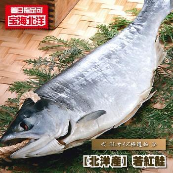 シャケ 鮭の読み方、サケ・シャケどちらが正しい呼び方なのか 専門家は「サケ」