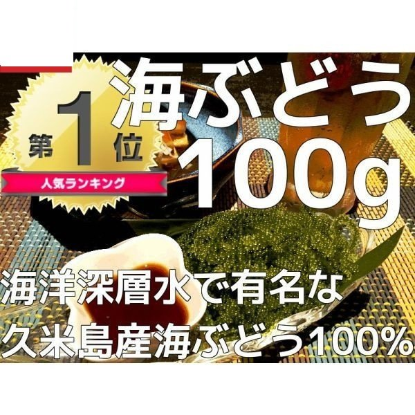 海ぶどう 沖縄 久米島産海ぶどう (100g) 海洋深層水 で有名な久米島産海ぶどう100% ポイント消化 食品 おすすめ|mejapon